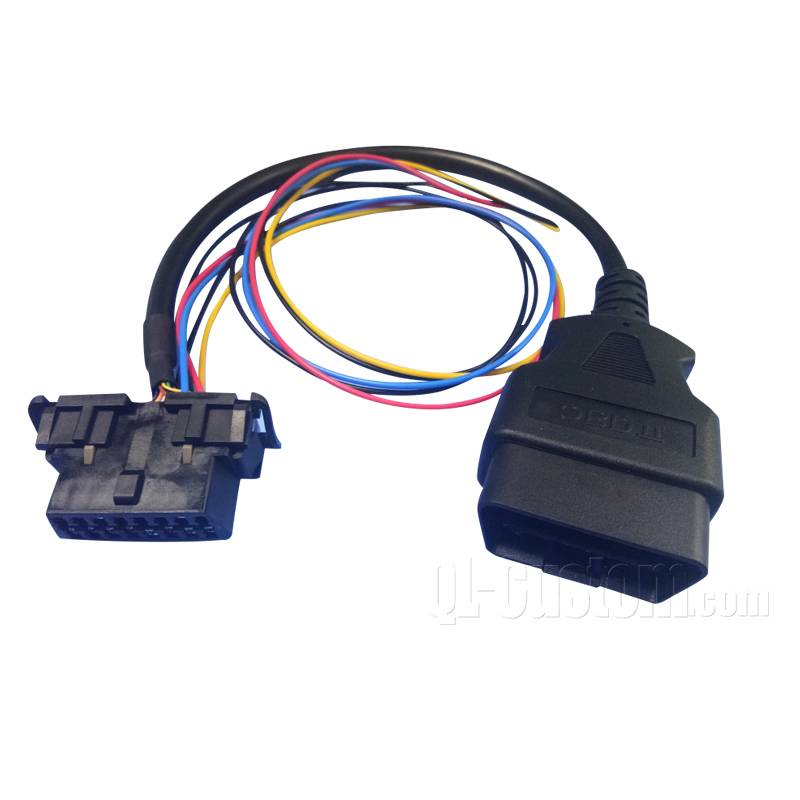 Overmolded OBD II with wire harness to OBDII female